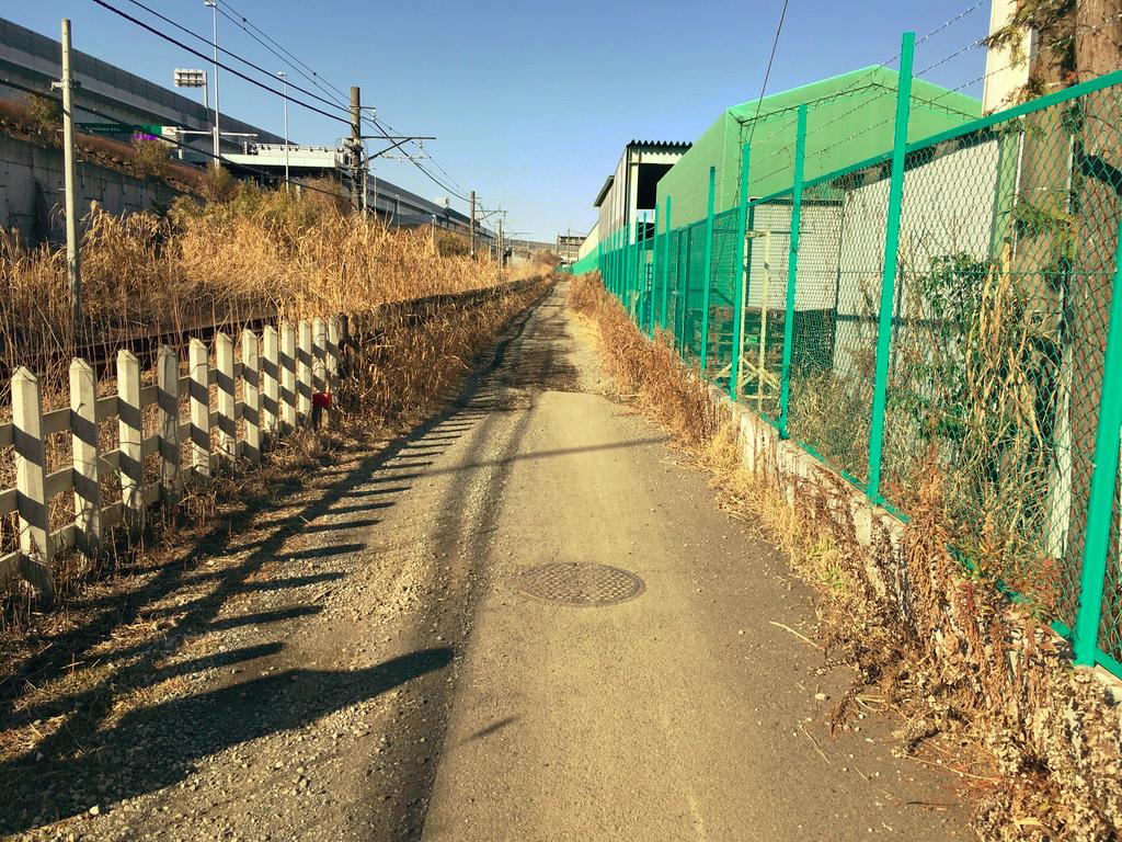 f:id:Hakuto-MA:20210201175223p:plain