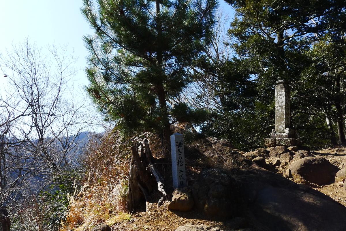 f:id:Hakuto-MA:20210221211515j:plain
