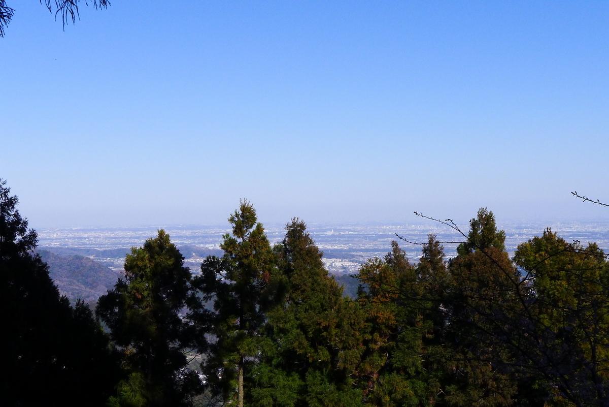 f:id:Hakuto-MA:20210221213111j:plain