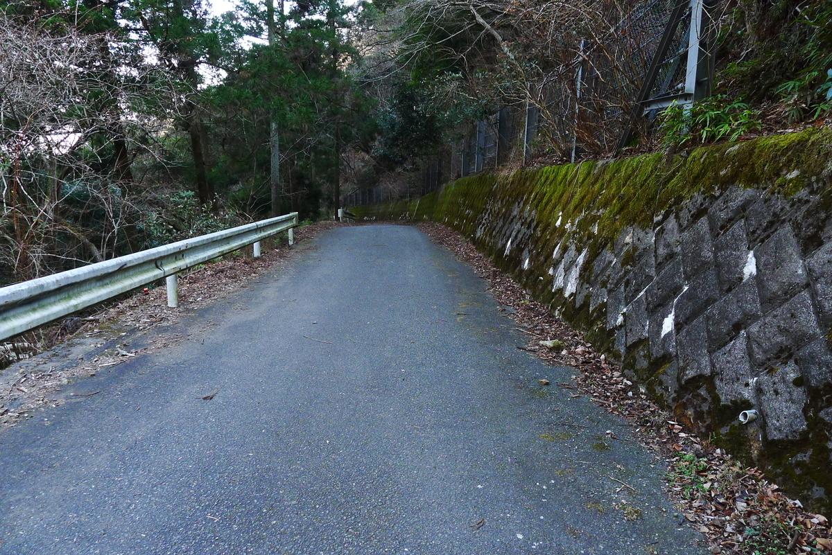 f:id:Hakuto-MA:20210221220512j:plain