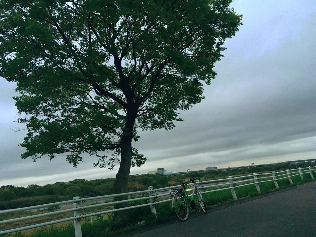 f:id:Hakuto-MA:20210415235040p:plain