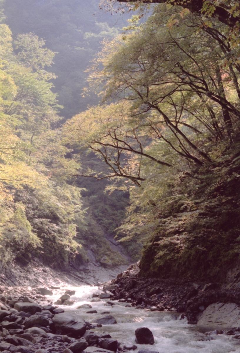 f:id:Hakuto-MA:20210717010305j:plain