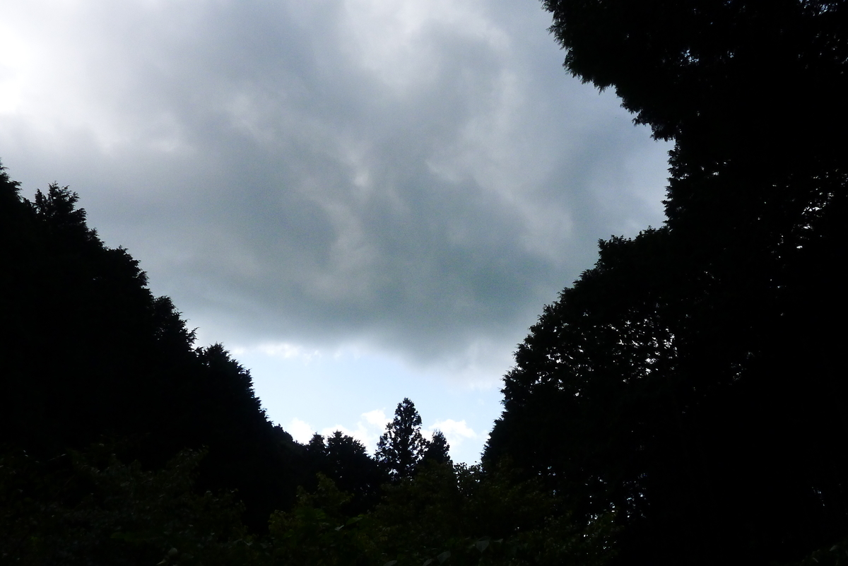 f:id:Hakuto-MA:20211007002203j:plain