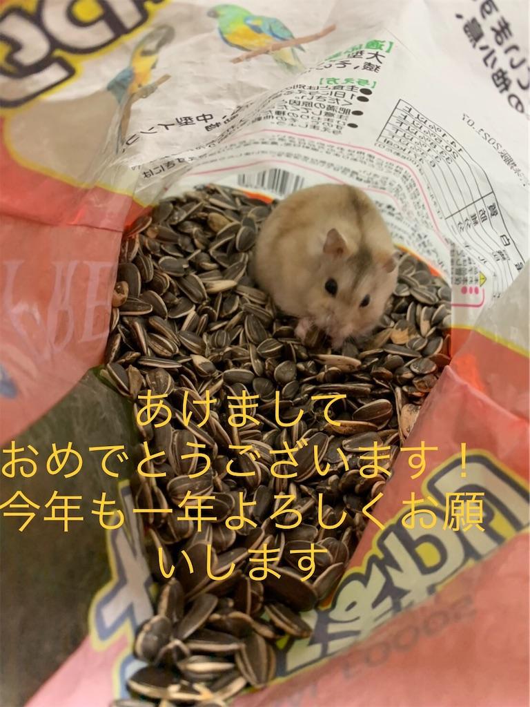 f:id:HamUsa:20200101103511j:image