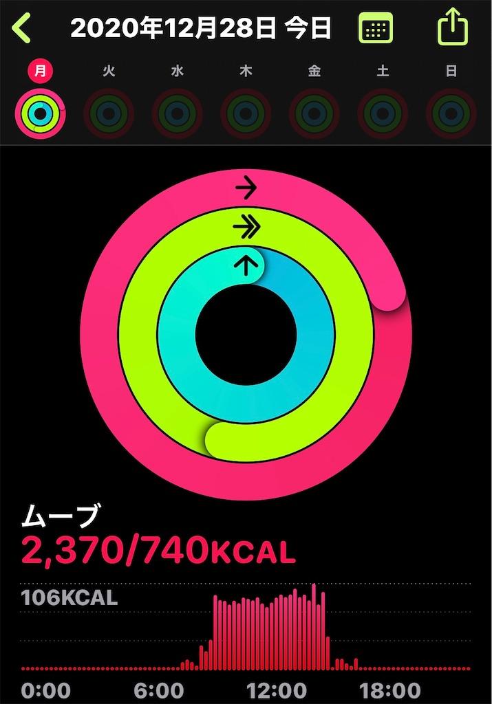 f:id:HamUsa:20201228204809j:plain