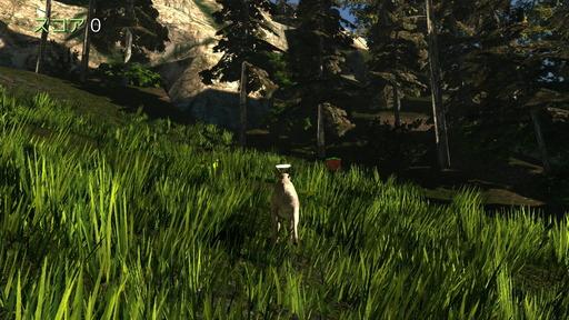 151215_Goat_t021-2