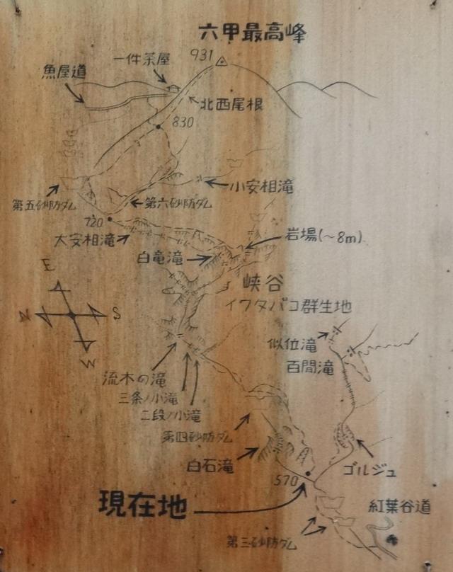 f:id:Hanamaru:20150822123257j:plain