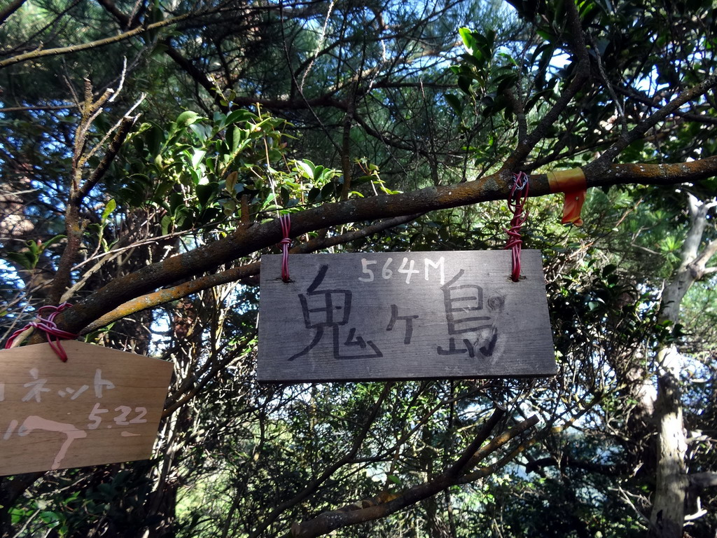 f:id:Hanamaru:20161010091157j:plain