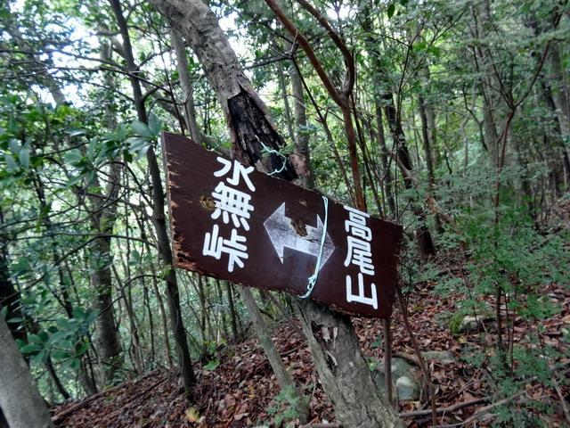 f:id:Hanamaru:20161010095247j:plain