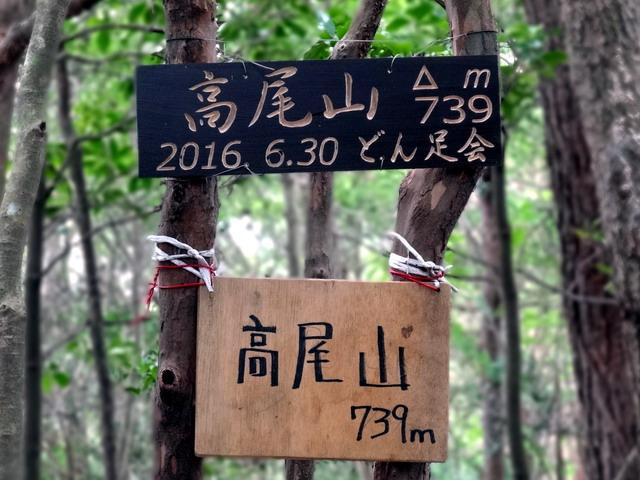 f:id:Hanamaru:20161010095450j:plain