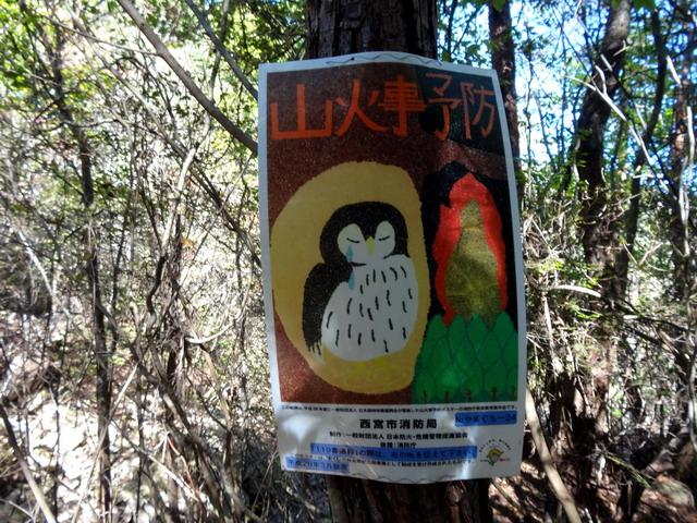 f:id:Hanamaru:20161102111749j:plain