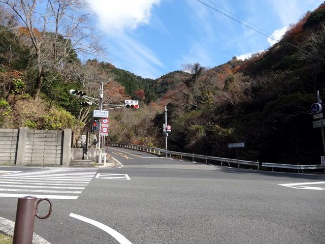 f:id:Hanamaru:20161208114009j:plain