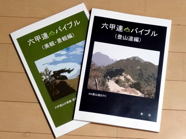 f:id:Hanamaru:20161210205109j:plain