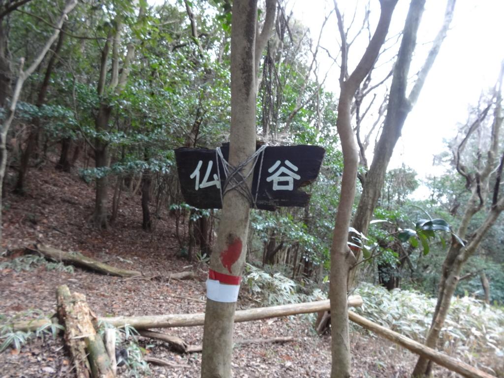 f:id:Hanamaru:20161215143548j:plain