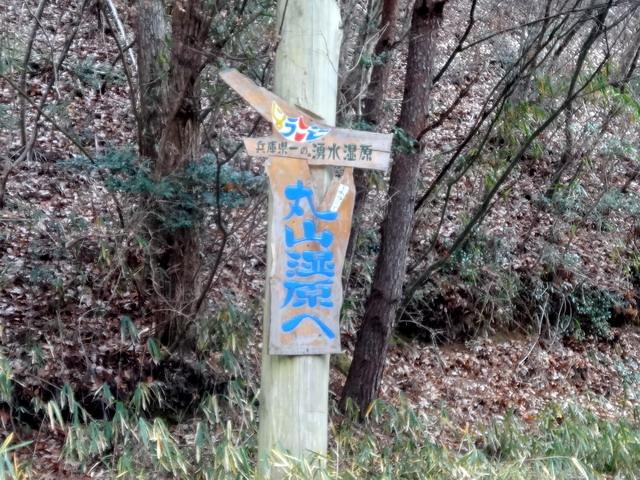 f:id:Hanamaru:20161229120115j:plain