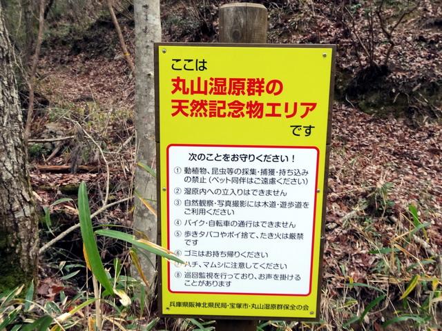 f:id:Hanamaru:20161229120821j:plain