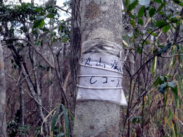 f:id:Hanamaru:20161229131824j:plain