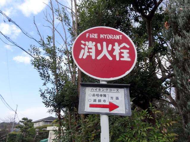 f:id:Hanamaru:20170103100934j:plain