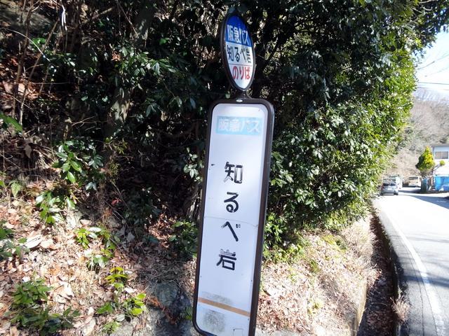 f:id:Hanamaru:20170128114309j:plain