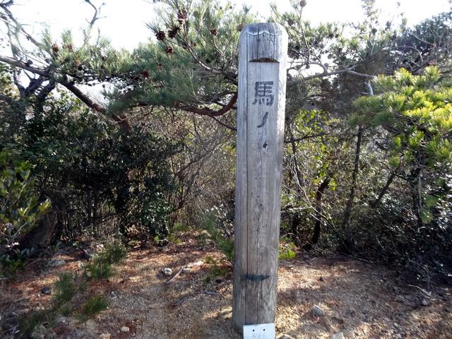 f:id:Hanamaru:20170128153436j:plain