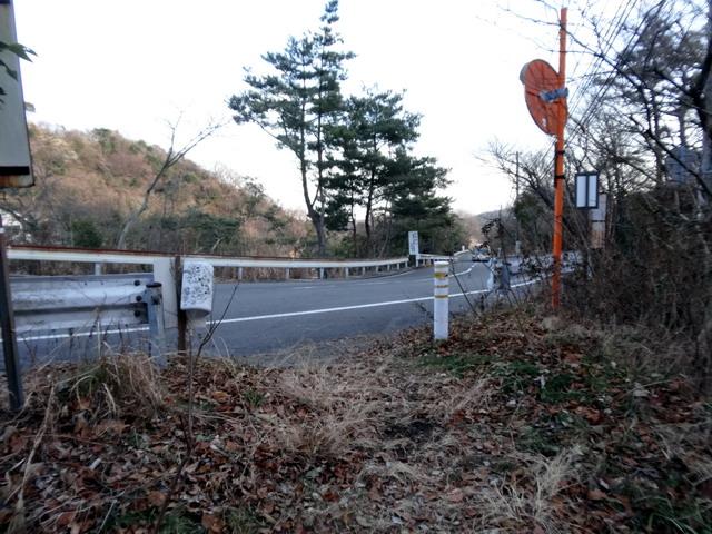 f:id:Hanamaru:20170128160005j:plain