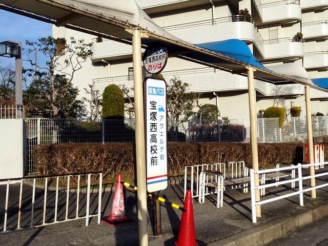 f:id:Hanamaru:20170128160557j:plain