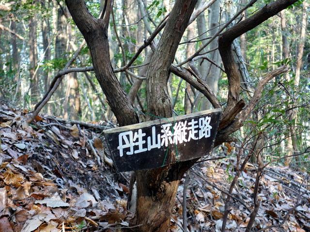 f:id:Hanamaru:20170320085043j:plain