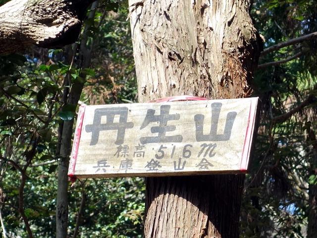 f:id:Hanamaru:20170320100502j:plain