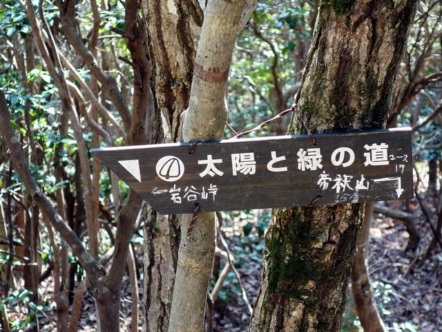 f:id:Hanamaru:20170320104350j:plain