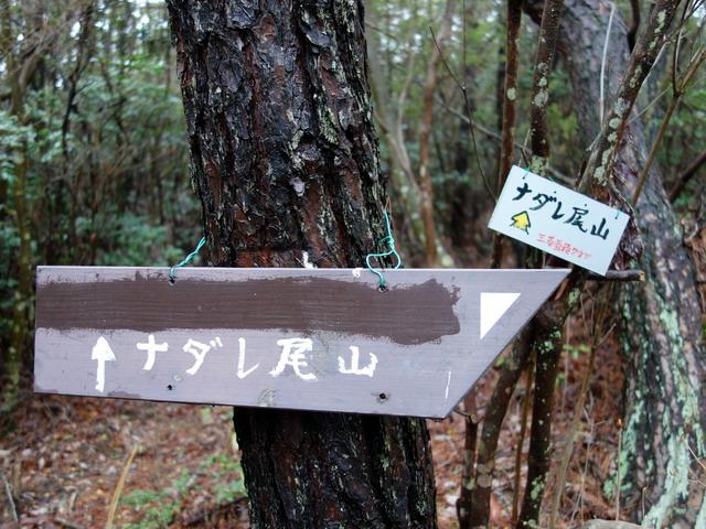 f:id:Hanamaru:20170408104000j:plain