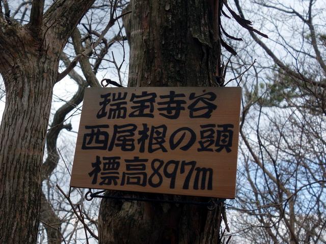 f:id:Hanamaru:20170413133139j:plain