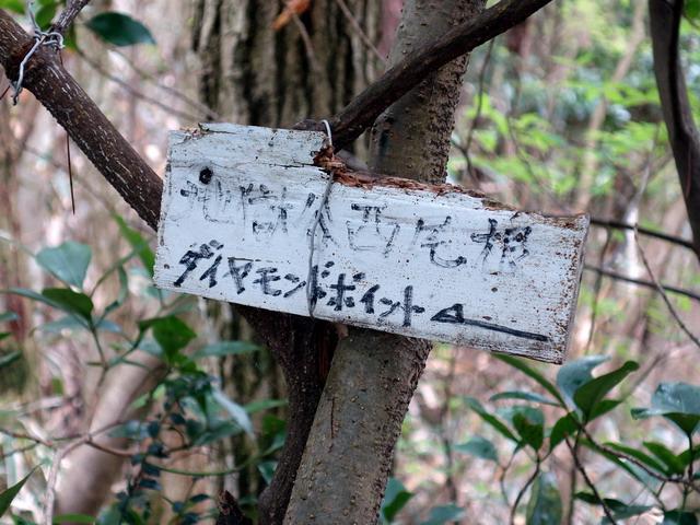 f:id:Hanamaru:20170506111423j:plain