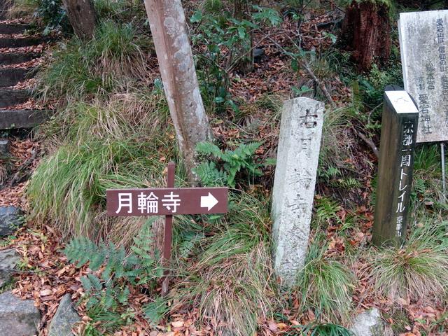 f:id:Hanamaru:20171105081627j:plain