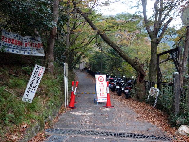 f:id:Hanamaru:20171105081642j:plain