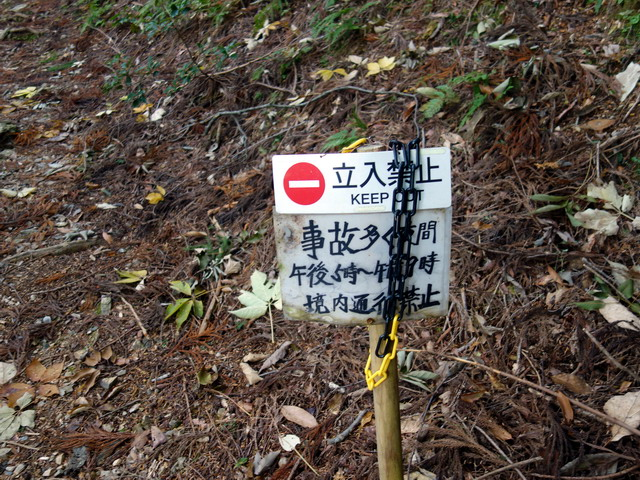 f:id:Hanamaru:20171105093500j:plain