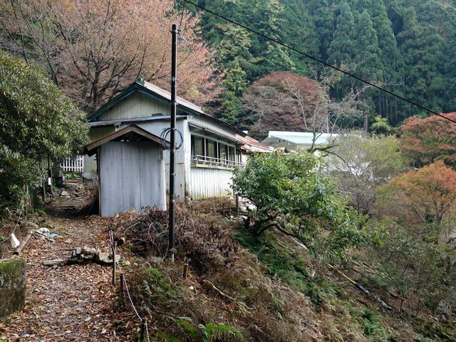 f:id:Hanamaru:20171105094119j:plain