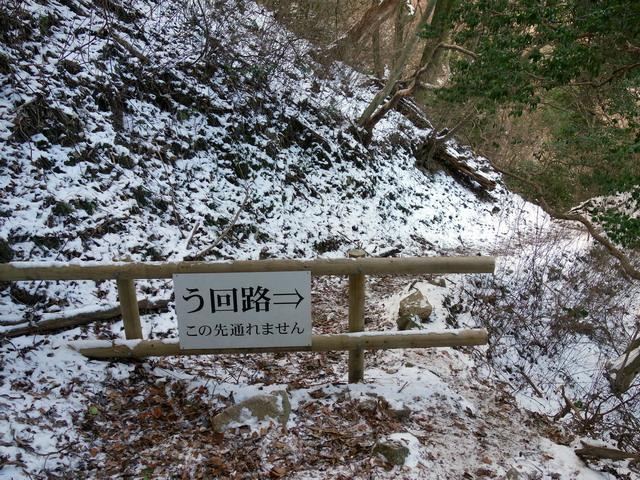 f:id:Hanamaru:20180114091850j:plain