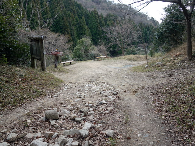 f:id:Hanamaru:20180307153318j:plain