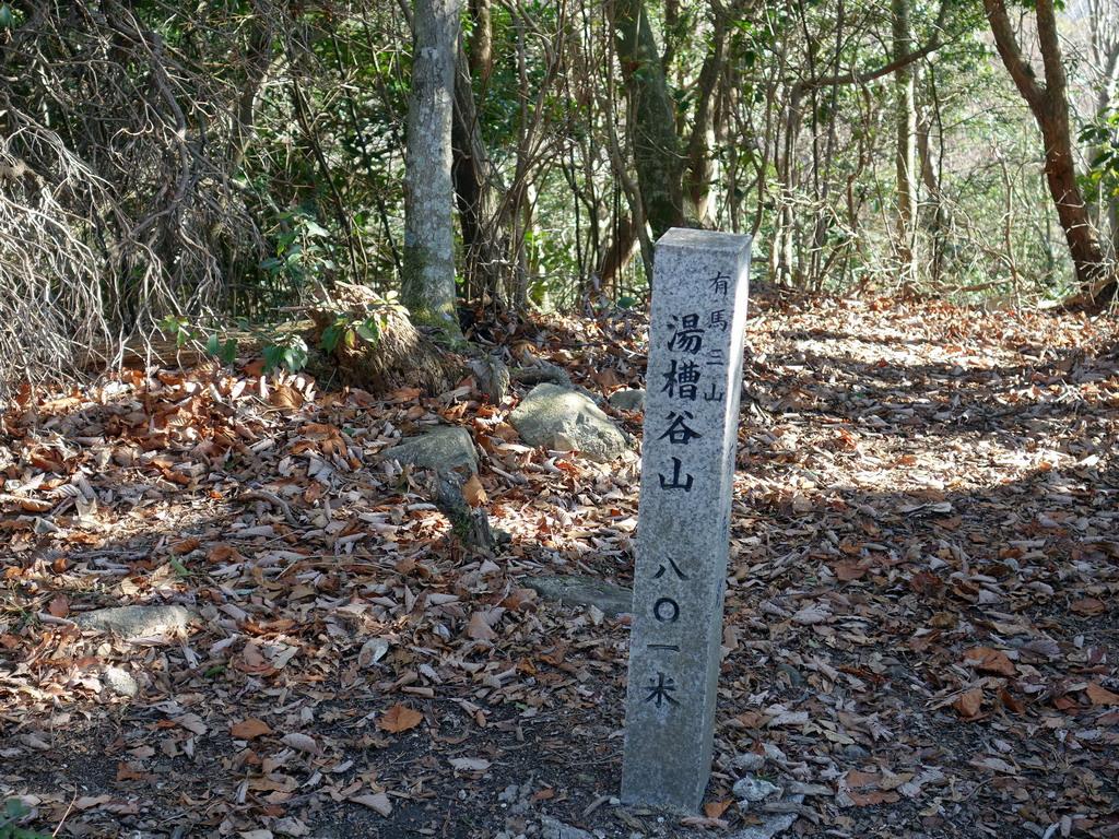 f:id:Hanamaru:20200113114142j:plain