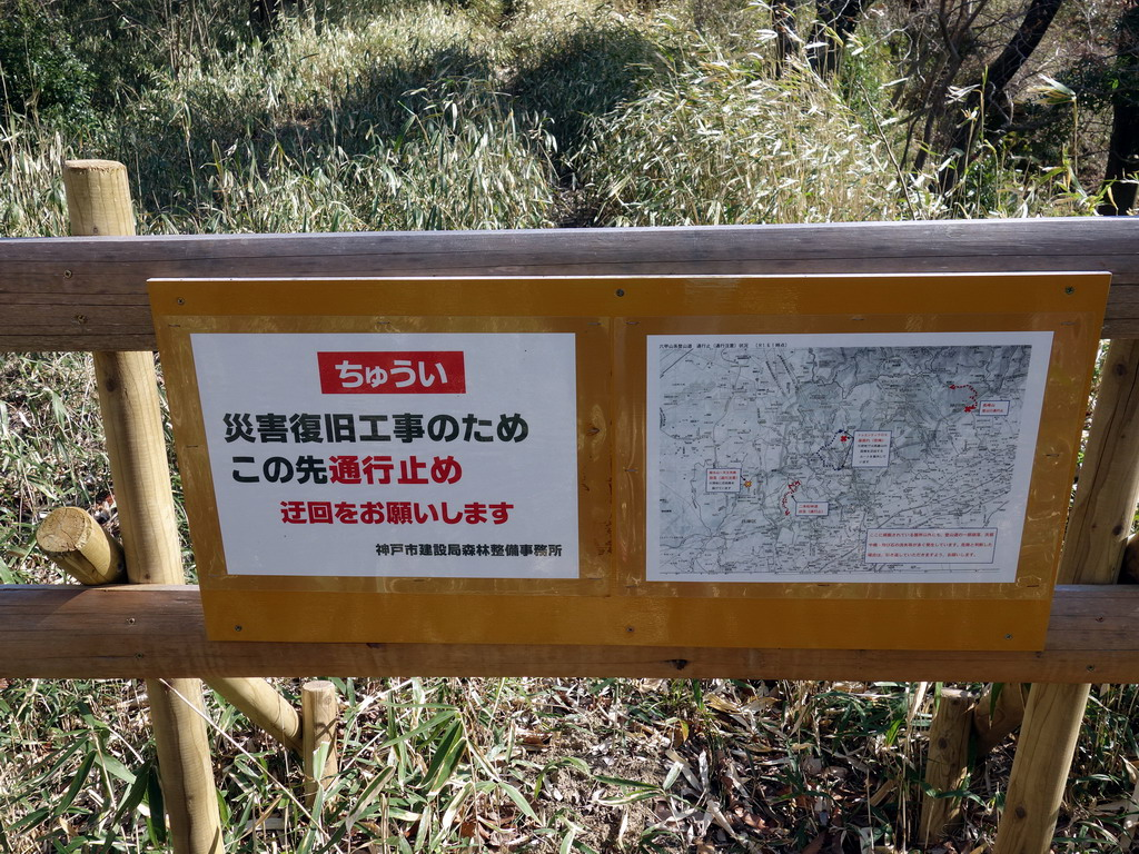 f:id:Hanamaru:20200320150451j:plain