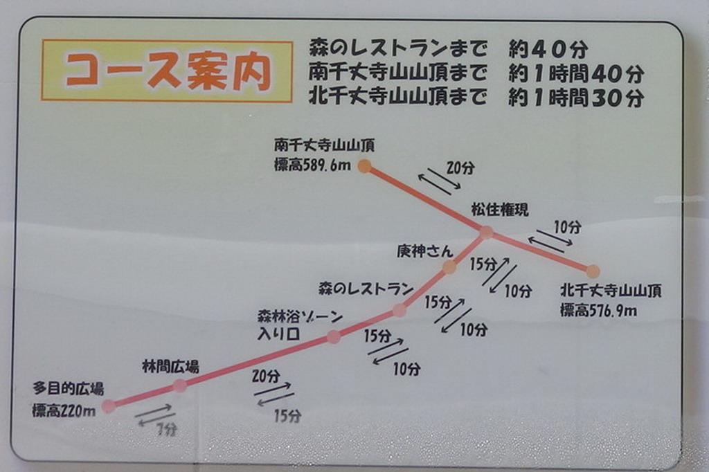 f:id:Hanamaru:20200329112006j:plain