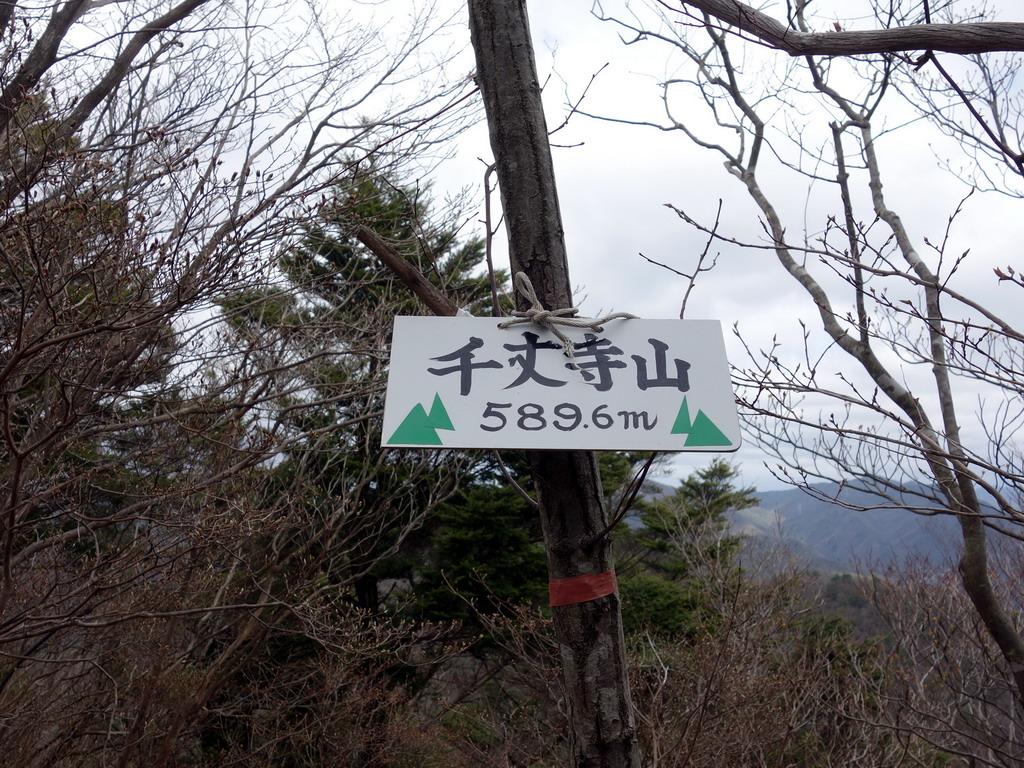 f:id:Hanamaru:20200329120622j:plain