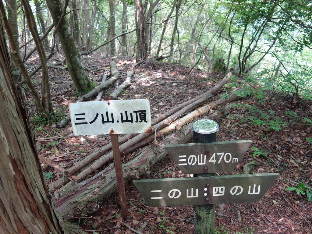 f:id:Hanamaru:20210624110147j:plain