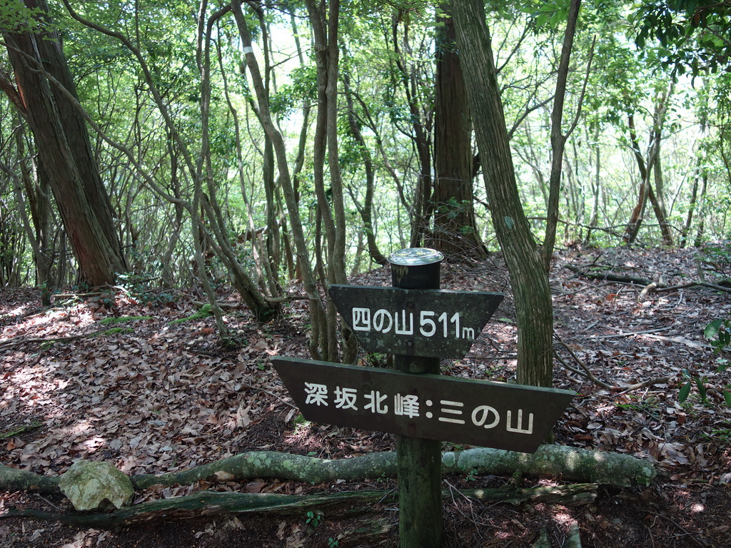 f:id:Hanamaru:20210624112429j:plain