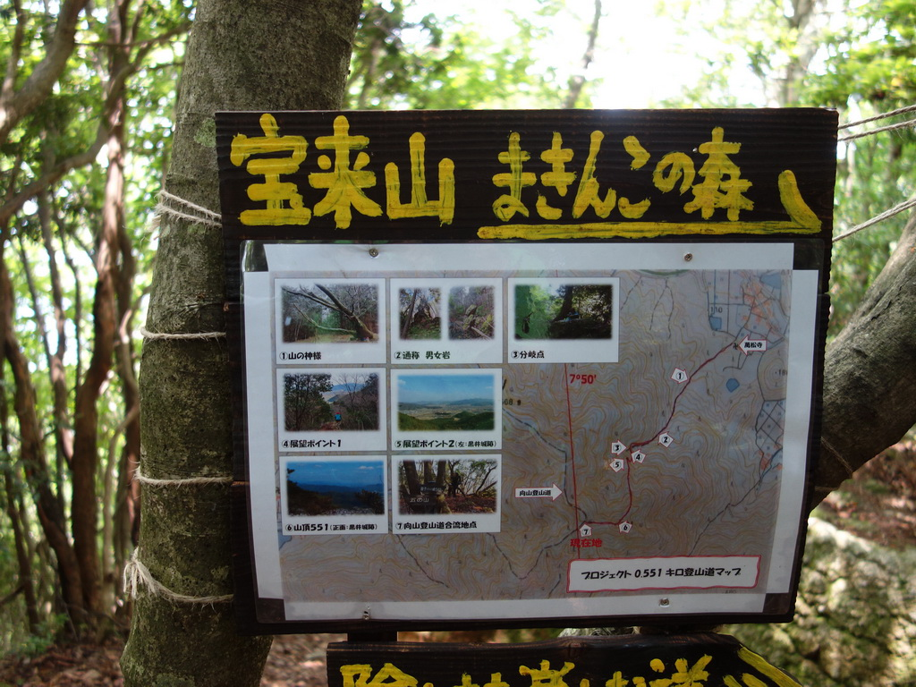 f:id:Hanamaru:20210624122050j:plain