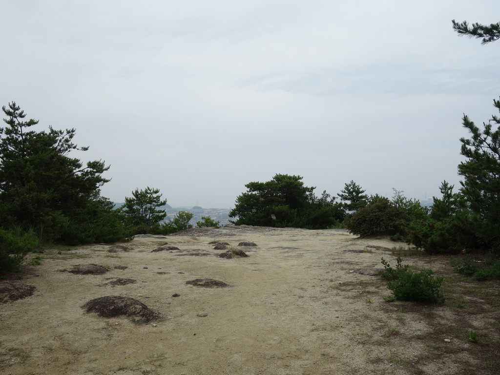 f:id:Hanamaru:20210704105555j:plain