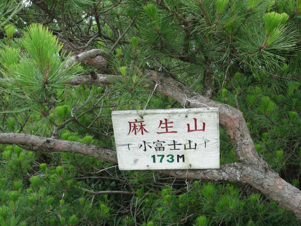 f:id:Hanamaru:20210704105626j:plain