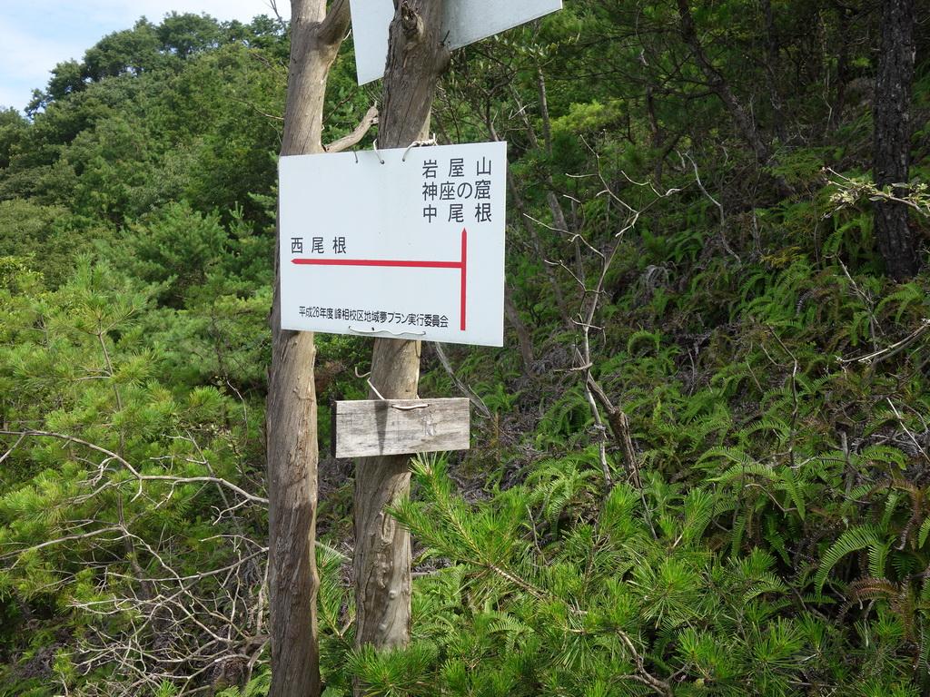 f:id:Hanamaru:20210717083729j:plain