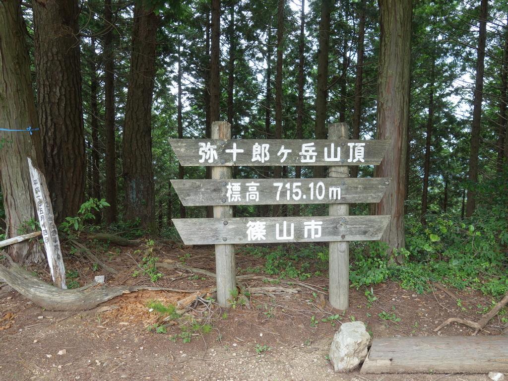 f:id:Hanamaru:20210727105502j:plain