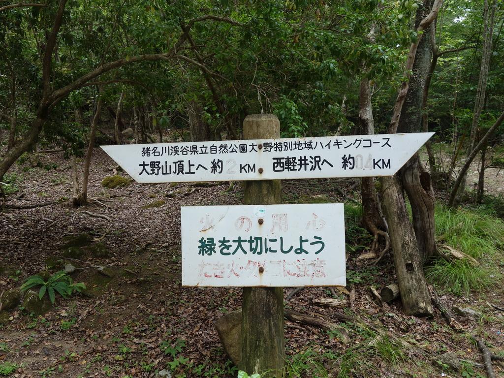 f:id:Hanamaru:20210727122214j:plain